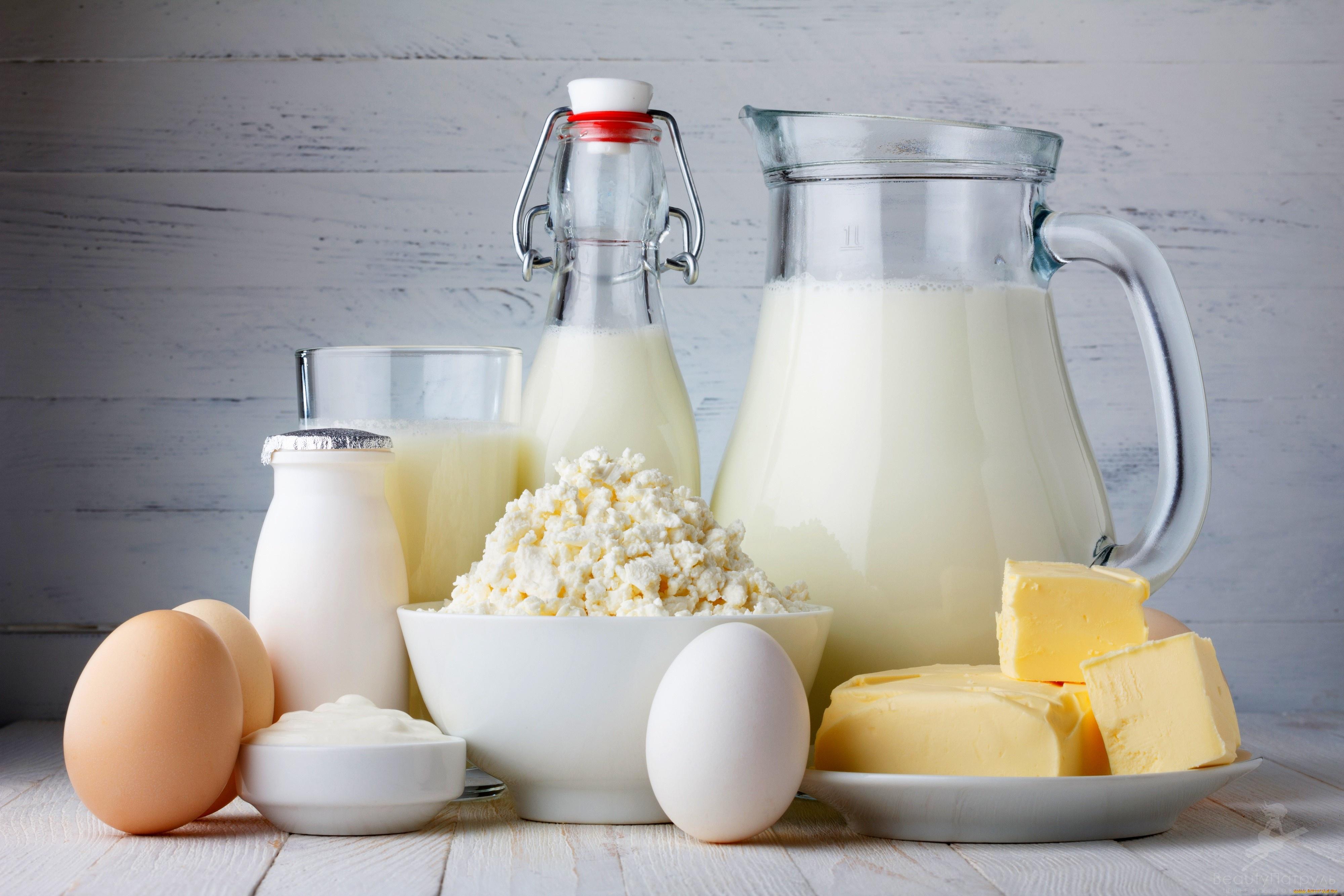 Молочно растительная диета детям
